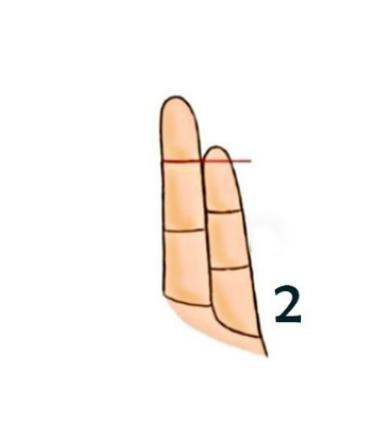 finger type2