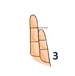 finger type3