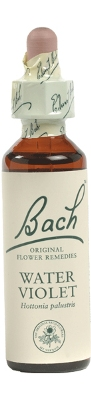 Bach-Water-Violet