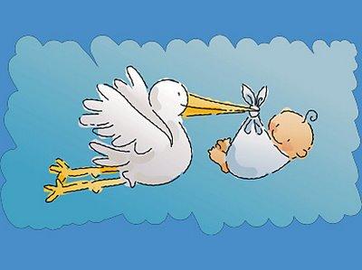 baby_stork_boy_lg