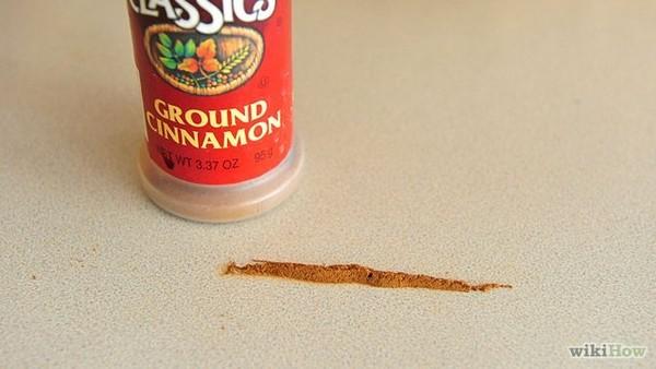 cinnamon-line-container