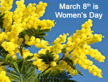 mimosa-flower-womens-day