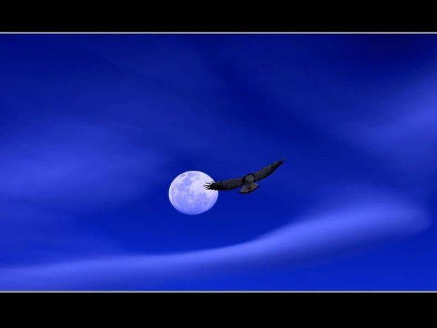 Η Σελήνη σε Καρκίνο, Λέοντα και Παρθένο