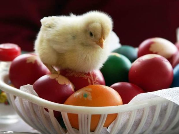 Πώς να φτιάξετε φυσικές βαφές για τα Πασχαλινά αβγά σας