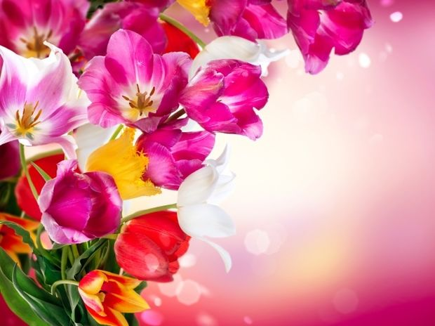 Ερωτική Πρωτομαγιά: Πες το με ένα λουλούδι