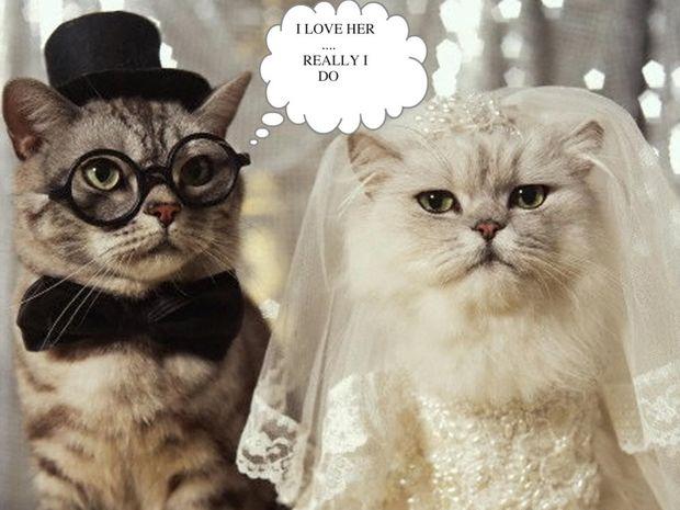 Ο γάμος τον μήνα των Διδύμων
