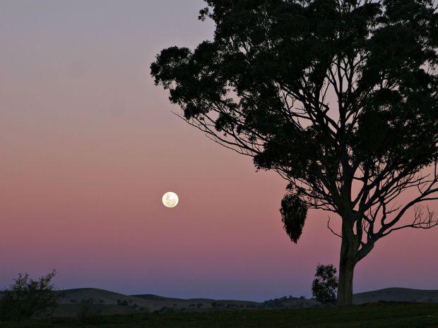 Τα καλοκαιρινά φεγγάρια: Μυθολογίες και οράματα