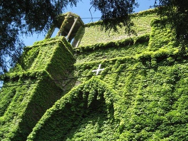 Μια πράσινη, παράξενη εκκλησία