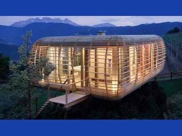 Το ξύλινο κλουβί