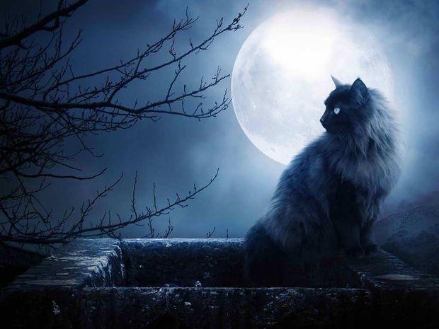 Η καθημερινή επιρροή της Σελήνης από 5 έως 7 Μαΐου
