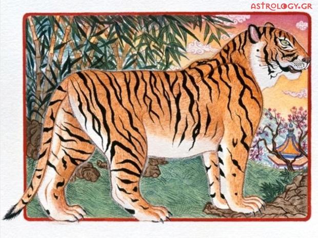 Ζώδια Κινέζικης Αστρολογίας: Η Τίγρη