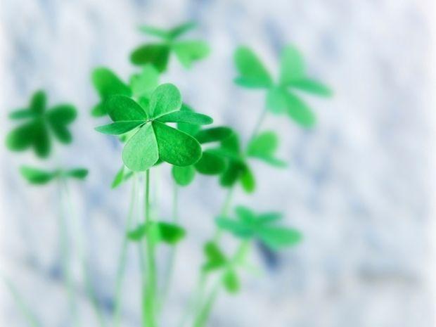 Οι 12 τυχερές στιγμές της ημέρας: Δευτέρα 24 Δεκεμβρίου