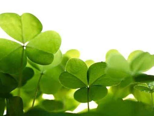 Οι 12 τυχερές στιγμές της ημέρας: Τετάρτη 1η Μαΐου