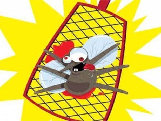 Τρόποι για να ξεφορτωθούμε τα κουνούπια πριν καν εμφανιστούν