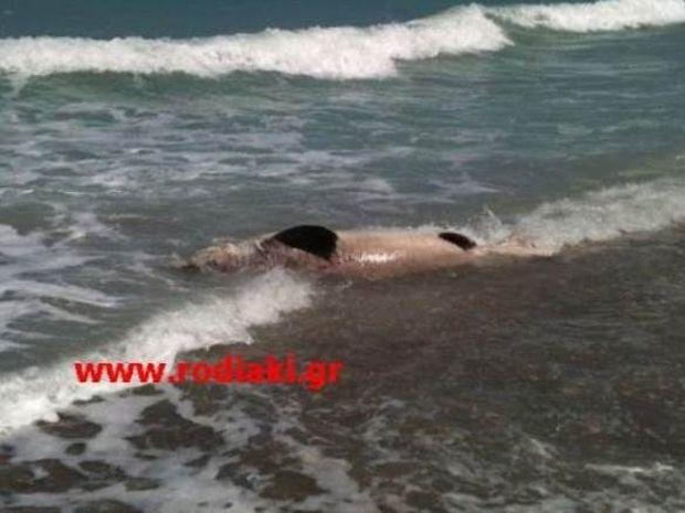 Ρόδος: Οι λουόμενοι έπαθαν σοκ με αυτό που είδαν στην ακτή!