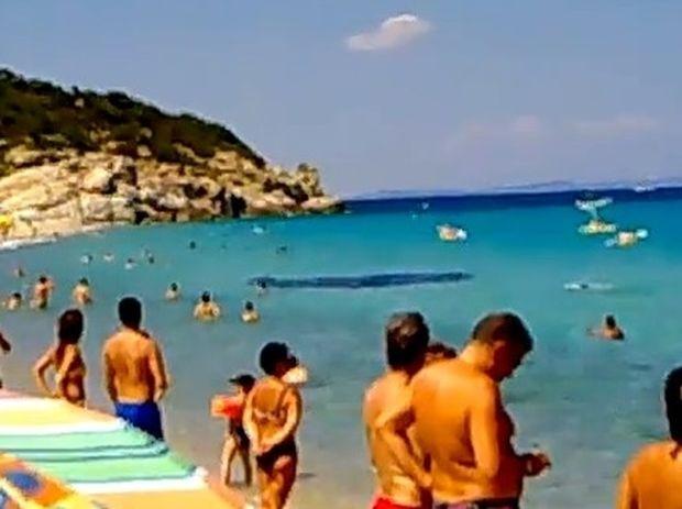 Βίντεο που «σοκάρει»! Δείτε τι εμφανίστηκε σε παραλία της Χαλκιδικής