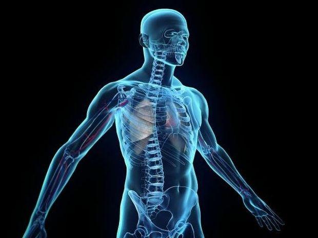 Ήξερες ότι...; Παράξενες αλήθειες για το ανθρώπινο σώμα