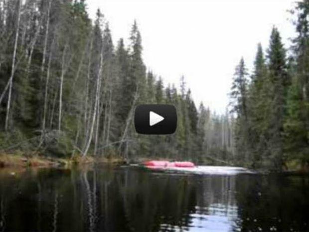 Βίντεο: Απολαμβάνοντας μια ήσυχη μέρα στη λίμνη όταν ξαφνικά…