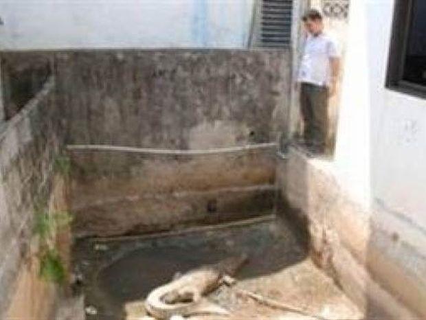 Δεν υπάρχει: Δείτε τι έκανε για να προφυλάξει το σπίτι του!