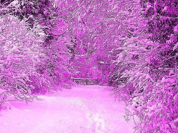 Το γνωρίζατε; Το χιόνι δεν είναι μόνο... άσπρο!
