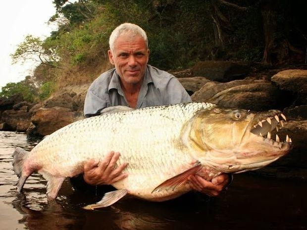 ΑΠΙΣΤΕΥΤΟ: Δείτε το Πιράνχας-τέρας που έπιασε ο 52χρονος ψαράς!