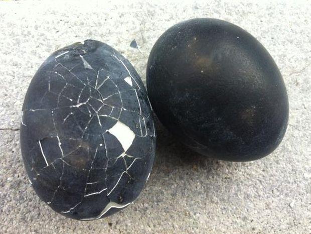 Τα παράξενα «μαύρα αυγά της ζωής»!