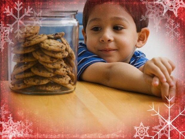 Πως αντιδρούν τα ζώδια αν δε μπορούν να ανοίξουν ένα βάζο μπισκότων;