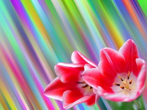 Οι τυχερές και όμορφες στιγμές της ημέρας: Δευτέρα 13 Ιανουαρίου