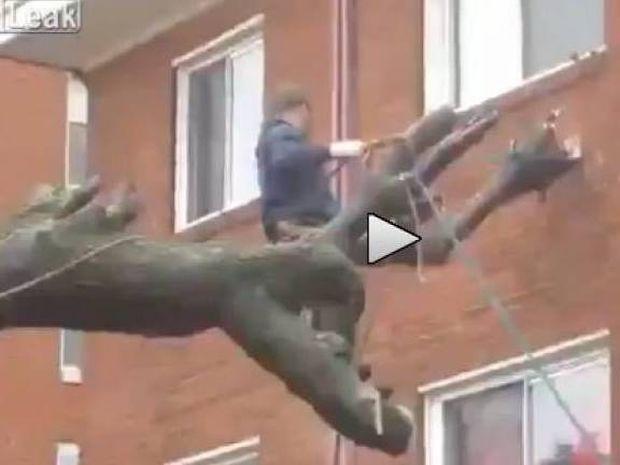 Βίντεο που σοκάρει: Πώς ΔΕΝ πρέπει να κόβετε ένα δέντρο