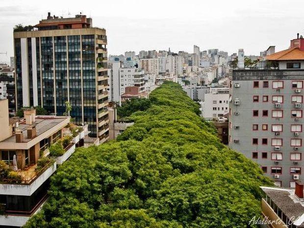 Είναι αυτός ο πιο όμορφος δρόμος στον κόσμο;