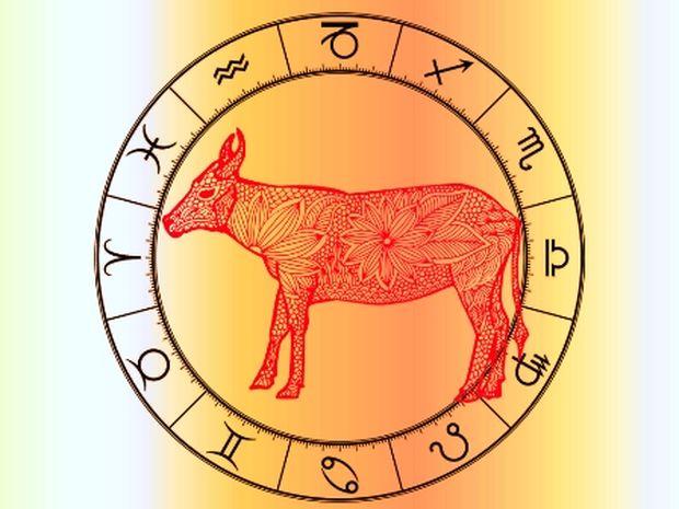 Κινέζικη αστρολογία: Ο Βούβαλος και τα 12 ζώδια της Δυτικής αστρολογίας