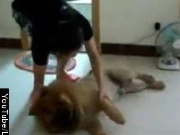 Κορυφαίο Βίντεο: Δείτε τι κάνει ένας σκύλος για να μην τον... πλύνουν
