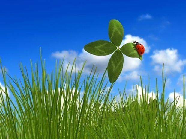 Οι τυχερές και όμορφες στιγμές της ημέρας: Τετάρτη 7 Μαΐου