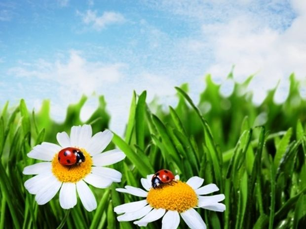 Οι τυχερές και όμορφες στιγμές της ημέρας: Tρίτη 17 Ιουνίου
