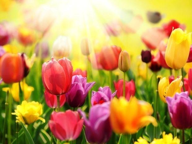 Οι τυχερές και όμορφες στιγμές της ημέρας: Tετάρτη 18 Ιουνίου