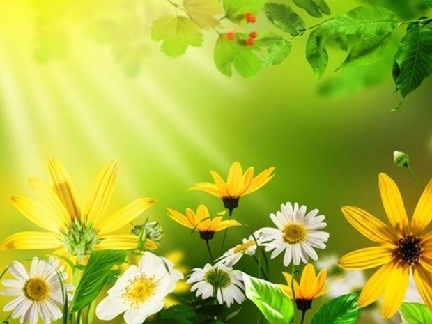 Οι τυχερές και όμορφες στιγμές της ημέρας: Κυριακή 22 Ιουνίου