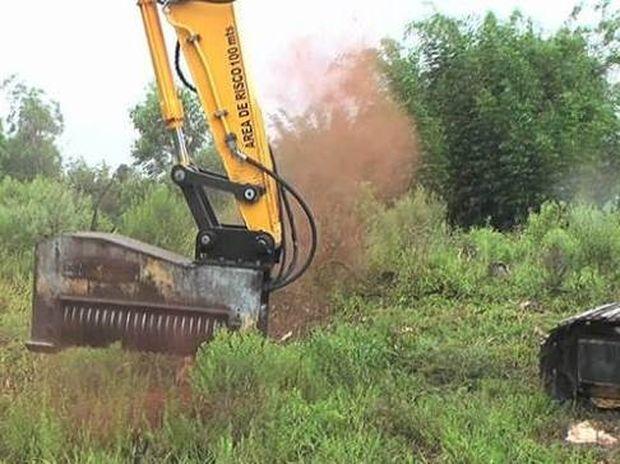 Τρομακτικό μηχάνημα σβήνει ολόκληρα δέντρα με ένα απλό άγγιγμα (Video)