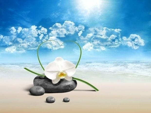 Οι τυχερές και όμορφες στιγμές της ημέρας: Παρασκευή 27 Ιουνίου