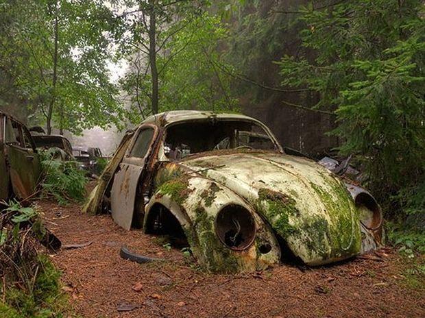 Κολλημένοι στην κίνηση για 70 χρόνια: Η ουρά αυτοκινήτων που πάγωσε στο χρόνο