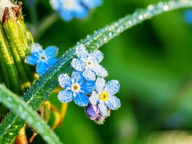 Οι τυχερές και όμορφες στιγμές της ημέρας: Κυριακή 20 Ιουλίου