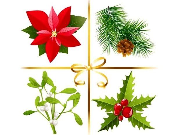 Οι τυχερές και όμορφες στιγμές της ημέρας: Παρασκευή 5 Δεκεμβρίου