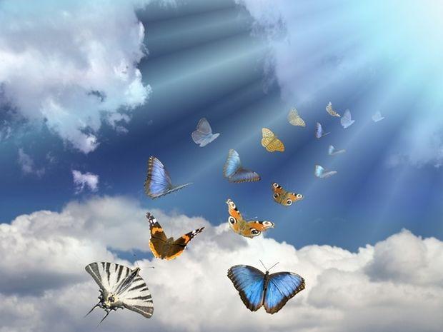 Οι τυχερές και όμορφες στιγμές της ημέρας: Δευτέρα 19 Ιανουαρίου