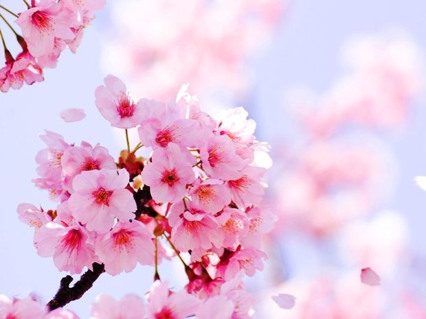 Οι τυχερές και όμορφες στιγμές της ημέρας: Παρασκευή 20 Φεβρουαρίου