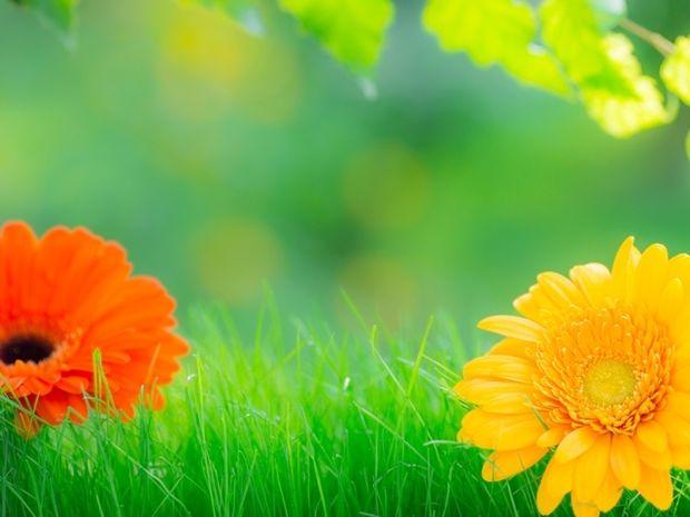 Οι τυχερές και όμορφες στιγμές της ημέρας: Σάββατο 28 Μαρτίου