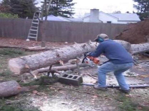 Έκοβε ένα δέντρο και συνέβη κάτι απίστευτο! (Βίντεο)