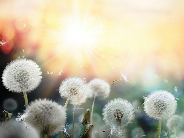 Οι τυχερές και όμορφες στιγμές της ημέρας: Σάββατο 4 Απριλίου