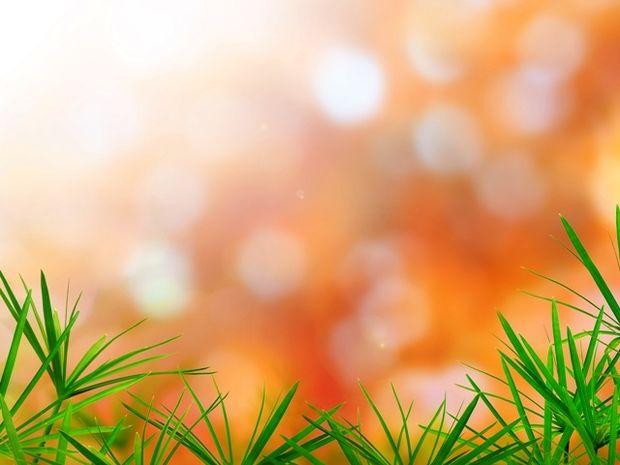 Οι τυχερές και όμορφες στιγμές της ημέρας: Πέμπτη 23 Απριλίου