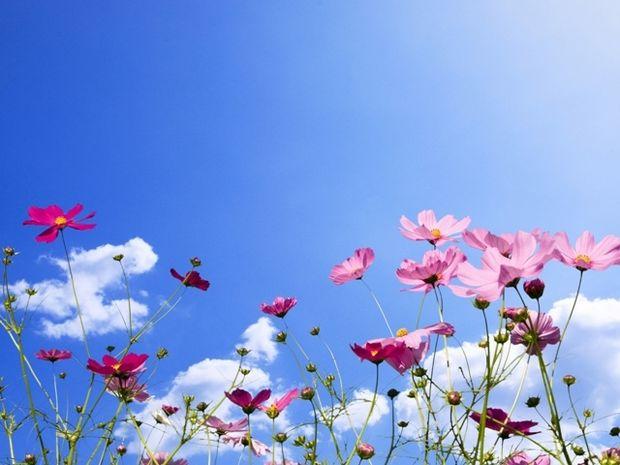 Οι τυχερές και όμορφες στιγμές της ημέρας: Τετάρτη 29 Απριλίου