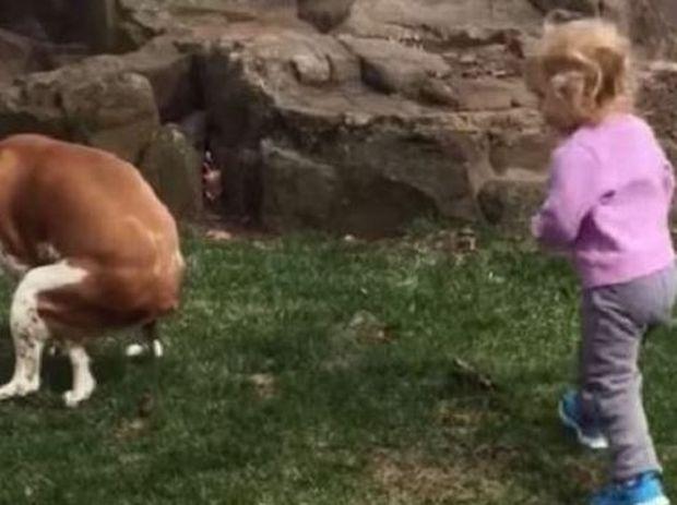 Αυτό το μωράκι πλησιάσε το σκύλο του και έκανε κάτι που κανείς δεν περίμενε! (βίντεο)