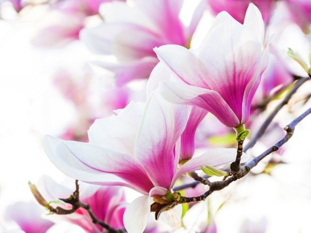 Οι τυχερές και όμορφες στιγμές της ημέρας: Παρασκευή 5 Ιουνίου